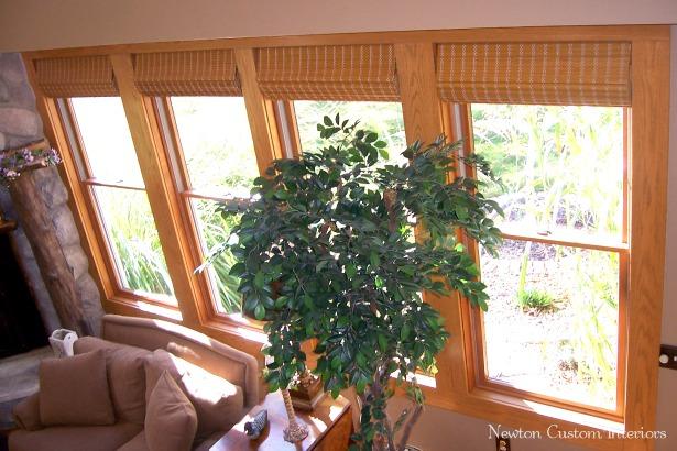 bamboo-shade