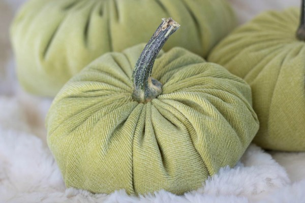 small-velvet-pumpkin