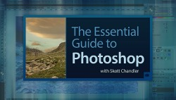 essential guide to photoshop